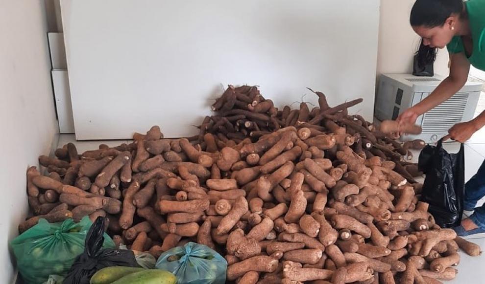 A Gestão Municipal realizou a entrega de  Alimentos pelo Programa de Aquisição de Alimentos da Agricultura Familiar