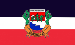 Bandeira do Município de Olivença